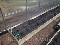 Почвогрунты для защищенного грунта