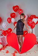 """Фотосессия ко Дню святого Валентина """"Воздушное настроение"""" г. Полтава 9"""