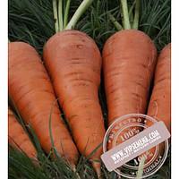 Seminis Санта Круз F1 (Santa Cruz) семена моркови типа Шантане Seminis, оригинальная упаковка (1 млн. семян)