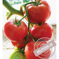 Cora Seeds Malinka Star F1 (Малинка Стар f1)  семена томата индет. розового Cora Seed, оригинальная упаковка (500 семян)
