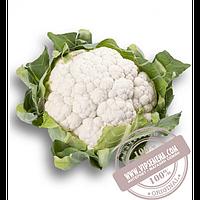 Rijk Zwaan Белькур F1 (Belcourt F1) семена цветной капусты Rijk Zwaan, оригинальная упаковка (2500 семян)