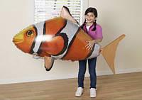 Рыба-клоун летающая
