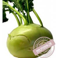 Bejo Колибри F1 (Kolibri F1) семена капусты кольраби Bejo, оригинальная упаковка (2500 семян, прецизионные)