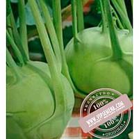 Bejo Корист F1 (Korist F1) семена капусты кольраби Bejo, оригинальная упаковка (2500 семян, прецизионные)