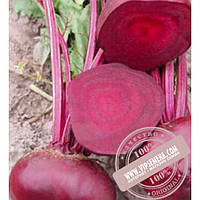 Bejo Водан F1 (Wodan F1) семена свеклы столовой Bejo, оригинальная упаковка (5000 семян прецизионные)