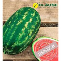 Clause Нельсон F1 (Nelson F1) семена арбуза, Clause, оригинальная упаковка (1000 семян)