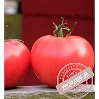 Clause Афен F1 (Afen F1) семена томата розового, индетер., Clause, оригинальная упаковка (1000 семян)