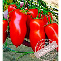 Clause Айдар F1 (Ajdar F1) семена томата красного, индетер, Clause, оригинальная упаковка (1000 семян)