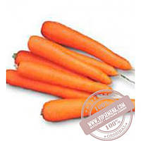 Nunhems Лагуна F1 (Lagyna F1) Ǿ 1.8-2.0 семена моркови тип Нантес Nunhems, оригинальная упаковка (100000-семян)