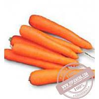 Nunhems Лагуна F1 (Lagyna F1) Ǿ 1.8-2.0 семена моркови тип Нантес Nunhems, оригинальная упаковка (25000-семян)