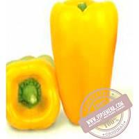 Nunhems Джемини F1 (Djemini F1) семена сладкого перца Nunhems, оригинальная упаковка (1000 семян)