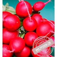 Nunhems Сора (Sora) семена редиса Nunhems, оригинальная упаковка (250 грамм)