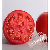 Nunhems Аксиома F1 (Axioma F1) семена индетерминантного томата Nunhems, оригинальная упаковка (500-семян)