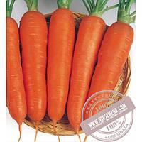 Seminis Виктория F1 (Victoria) семена моркови типа Шантане Seminis, оригинальная упаковка (0.5 кг.) АКЦИЯ!!!