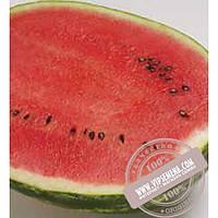 Syngenta Топ Ган F1 (Top Gan F1) семена арбуза Syngenta, оригинальная упаковка (1000 семян)