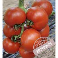 Esasem Чероки F1 (Cheroki F1) семена индетерминантного томата Esasem, оригинальная упаковка (1000 семян)
