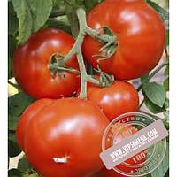 Esasem Нада F1 (Nada F1) семена индетерминантного томата Esasem, оригинальная упаковка (1000 семян)