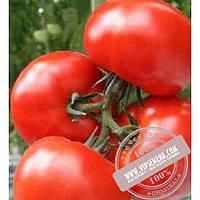 Тирас Гарди F1 (Gardi F1) семена индетерминантного томата Moravoseed, оригинальная упаковка (500 семян)