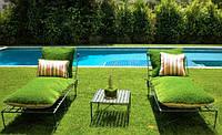 Ідеї використання декоративної трави