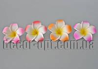 Голова цветка жасмина из латекса 5 см/1 шт