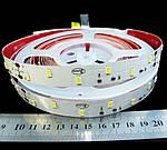 Світлодіодна стрічка 24вольт стандарт