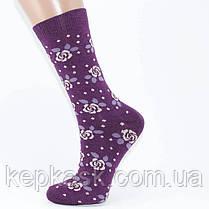Шкарпетки жіночі MC Marde осінь-весна, фото 2