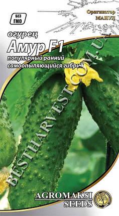 Семена огурца «Амур F1» 0.25 г партенокарпические, фото 2