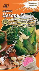 Семена огурца «Цезарь F1» 5 г, инкрустированные