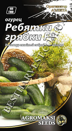 Семена огурца «Ребятки с грядки F1» 0.3 г, фото 2