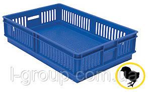 Ящик для перевезення добових курчат на 1 відділення