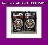 Акустика  AILIANG  USBFM-610!Акция