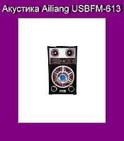 Акустика Ailiang USBFM-613!Акция