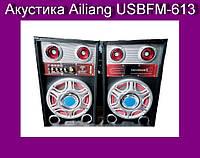 Акустика Ailiang USBFM-613!Опт