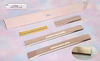 Комплект накладок на пороги Натанико BMW X5 E70 2007-2013 (4шт)