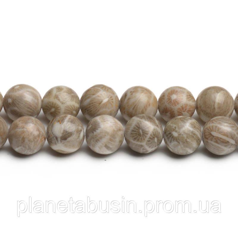 8 мм Ископаемый Коралл АА, CN271, Натуральный камень, Форма: Шар, Отверстие: 1мм, кол-во: 47-48 шт/нить