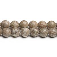 Ископаемый Коралл, Натуральный камень, На нитях, бусины 8 мм, Шар, Отверстие 1 мм, кол-во: 47-48 шт/нить
