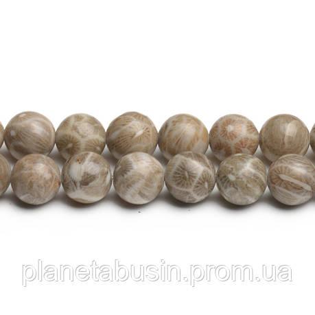 8 мм Ископаемый Коралл АА, CN271, Натуральный камень, Форма: Шар, Отверстие: 1мм, кол-во: 47-48 шт/нить, фото 2
