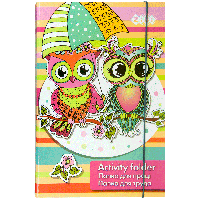 Папка для труда OWLS на резинке А4+