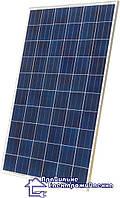 Сонячна батарея Osda ODA260-30-P , фото 1