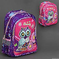 Рюкзак школьный , 2 цвета, 2 отделения, 2 кармана, новая ортопедическая спинка