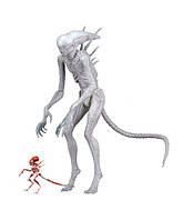 NECA Чужой: Завет Неоморф, Alien Covenant Neomorph, Чужий Заповіт Неоморф