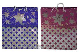 Пакет картонный (20,5х24,5х8,5см с фольгой 2 цвета)