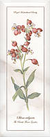 Декор Kerama Marazzi 15Х40Х8 Ноттингем Цветы Грань (Nt\A87\15005)