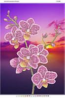 """Схема для частичной вышивки бисером 58х41см  """"Орхидея на закате"""""""