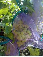 Сетка-мешок для винограда от ос и птиц.