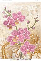 """Схема для частичной вышивки бисером 58х41см  """"Орхидея и жемчуг"""""""