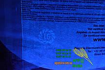 Семена подсолнечника Limagrain LG Мегасан , фото 3