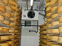 Хранения и дозревания сыра в холодильных камерах