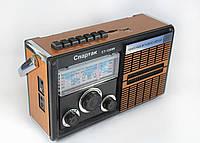 Портативный MP3 Спикер CT 1200 Радио FM