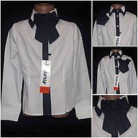 Блузка для девочки в школу на поплине, Польша, рост 116-146 см., 255/215 (цена за 1 шт. + 40 гр.)